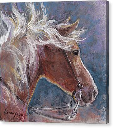 Sunny Haflinger Canvas Print by Tracie Thompson
