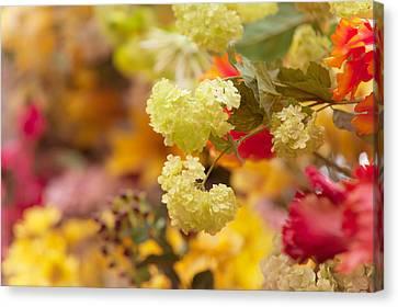 Sunny Mood. Amsterdam Flower Market Canvas Print
