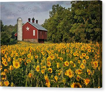 Sunny Morning Canvas Print by Lori Deiter