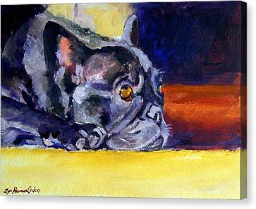 Sunny Patch French Bulldog Canvas Print by Lyn Cook
