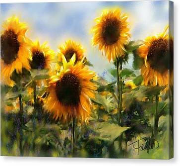 Sunny-side Up Canvas Print by Colleen Taylor