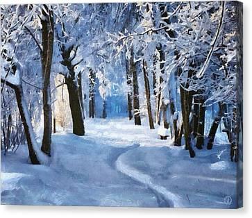 Sunny Snowy Day Canvas Print