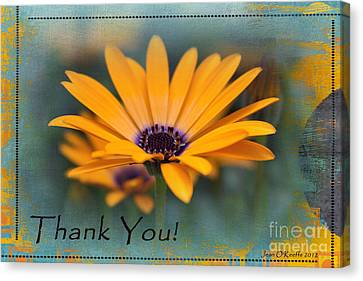 Canvas Print featuring the photograph Sunny Thank You  by Jean OKeeffe Macro Abundance Art