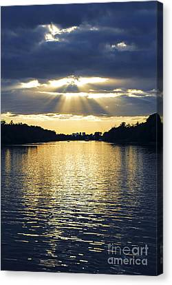 Sunrays On Toronto Island Canvas Print by Elena Elisseeva