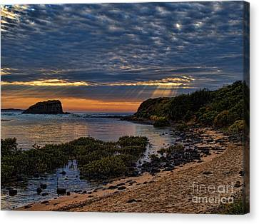 Canvas Print featuring the photograph Sunrays by Trena Mara