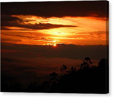 Sunrise Above The Clouds Canvas Print by Evan Hendrickson