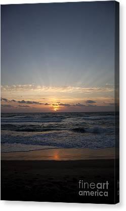 Sunrise Canvas Print by Amanda Barcon