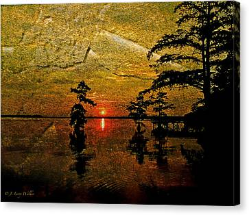 Sunrise And Cypress Abstract Canvas Print by J Larry Walker