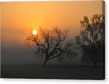 Sunrise And Fog Canvas Print