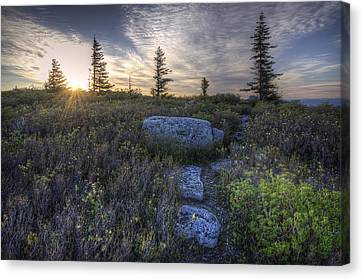 Sunrise At Bear Rocks Canvas Print by Michael Donahue