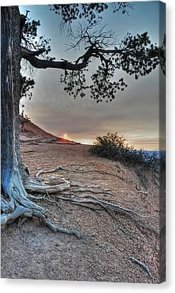 Sunrise At Bryce Canyon Canvas Print by Darlene Bushue