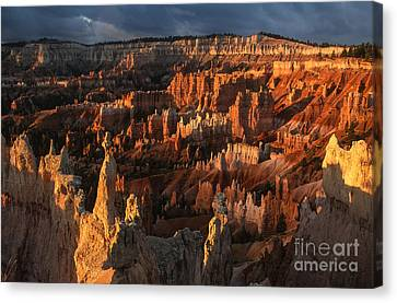 Sunrise At Bryce Canyon Canvas Print by Sandra Bronstein