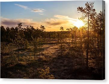 Sunrise At Linnaistensuo Canvas Print by Janne Mankinen
