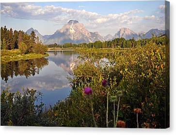 Sunrise At Oxbow Bend 5 Canvas Print by Marty Koch
