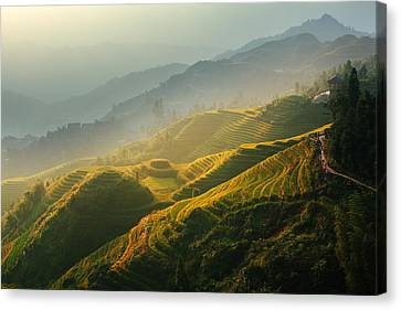 Sunrise At Terrace In Guangxi China 2 Canvas Print