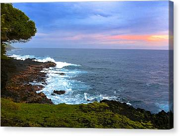 Sunrise At The Point Hawaii Canvas Print by Venetia Featherstone-Witty