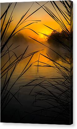 Sunrise At The Sepulveda Dam Wildlife Reserve Canvas Print by Joe Doherty
