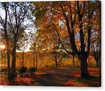 Sunrise Autumn Canvas Print