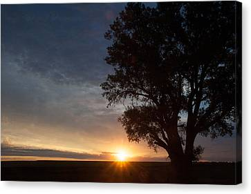 Sunrise Awaited Canvas Print by Shirley Heier