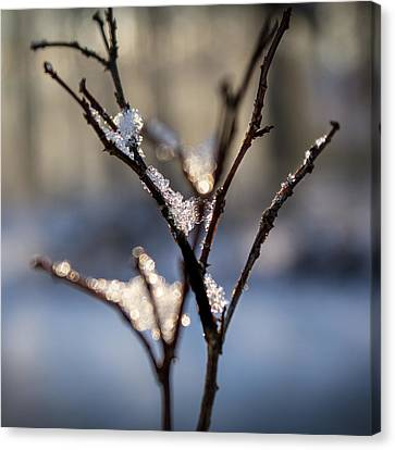 Canvas Print featuring the photograph Sunrise Crystals by Glenn DiPaola
