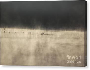 Sunrise Geese Canvas Print by Melissa Petrey