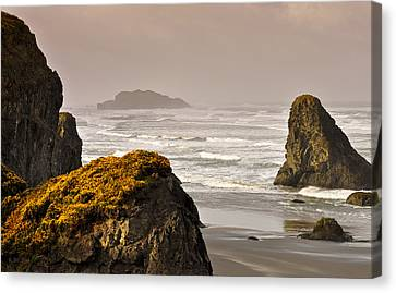 Canvas Print featuring the photograph Sunrise Gold And Surf by Kevin Munro