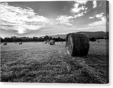 Sunrise Hay Bales Canvas Print by Bob King