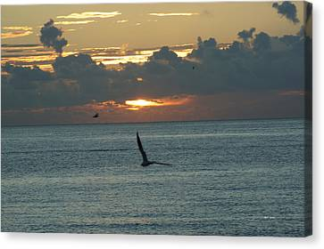 Canvas Print featuring the photograph Sunrise In The Florida Riviera by Rafael Salazar