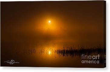 Sunrise In The Fog Canvas Print