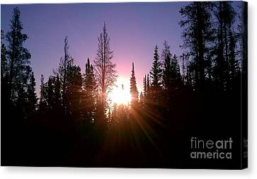 Canvas Print featuring the photograph Sunrise In The Forest by Chris Tarpening