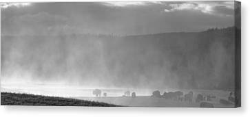 Sunrise In Yellowstone Canvas Print by Dan Sproul