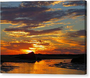 Canvas Print featuring the photograph Sunrise Magic by Dianne Cowen