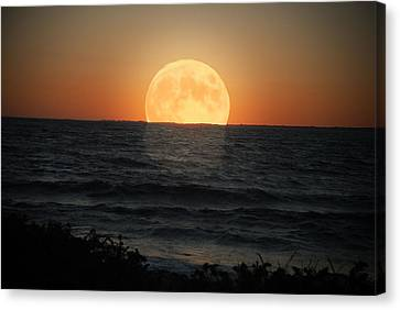 Canvas Print - Sunrise Moon by Tammy Collins