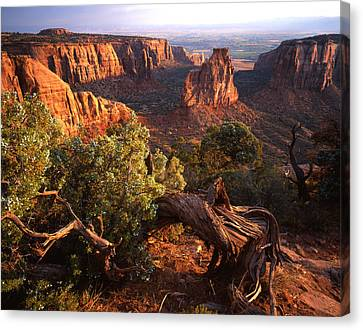 Sunrise On Indepedence Canvas Print by Ray Mathis