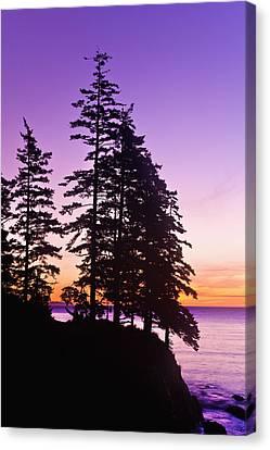 Sunrise On Monashka Bay At Ft Canvas Print