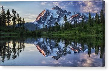 Snowy Trees Canvas Print - Sunrise On Mount Shuksan by James K. Papp