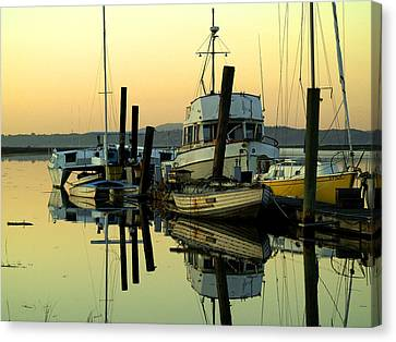 Sunrise On The Petaluma River Canvas Print by Bill Gallagher