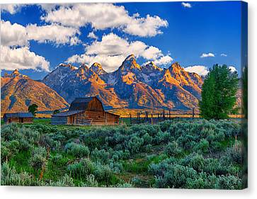 Sunrise On The Tetons Limited Edition Canvas Print by Greg Norrell