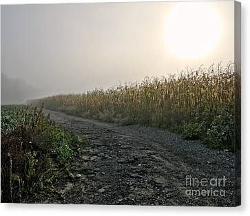 Sunrise Over Country Road Canvas Print by Olivier Le Queinec