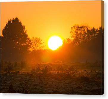 Murray Kentucky Canvas Print - Sunrise Over Field by Neil Todd