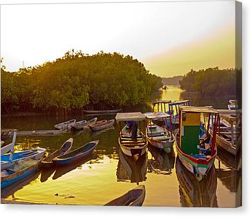 Sunrise Over Gambian Creek Canvas Print