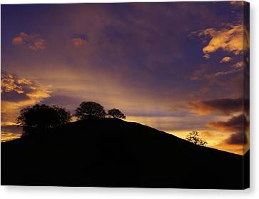 Sunrise Over Hidden Lakes Park Canvas Print by Colleen Renshaw