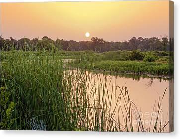 Sunrise Over The Marsh Canvas Print