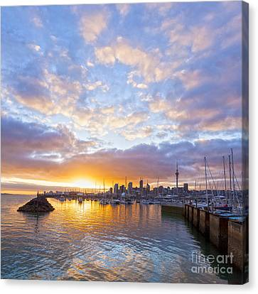 Auckland Canvas Print - Sunrise Over Westhaven Marina Auckland New Zealand by Colin and Linda McKie