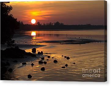 Canvas Print featuring the photograph Sunrise Photograph by Meg Rousher