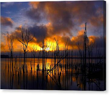 Sunrise Canvas Print by Raymond Salani III