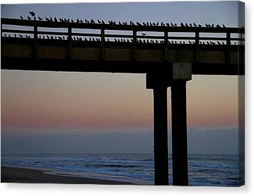 Canvas Print featuring the photograph Sunrise Roll Call by Kathy Ponce