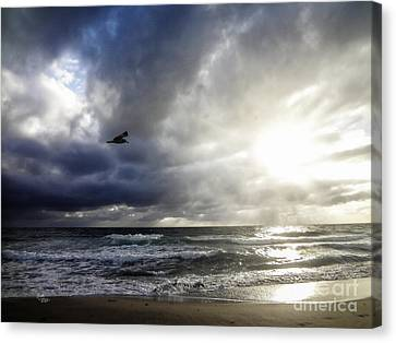 Sunrise South Florida Treasure Coast Canvas Print by Ginette Callaway