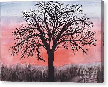 November Sunrise Walnut Tree Watercolor Canvas Print