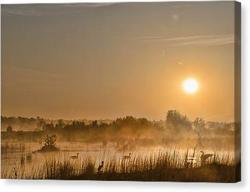 Sunrise With The Geese Canvas Print
